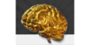 Logo van Train Your Brain