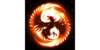 Logo van Phoenix Protection Systeem