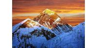 Logo van Mount Effortless