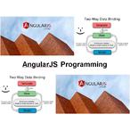 Thumbnail int700 angularjs programming
